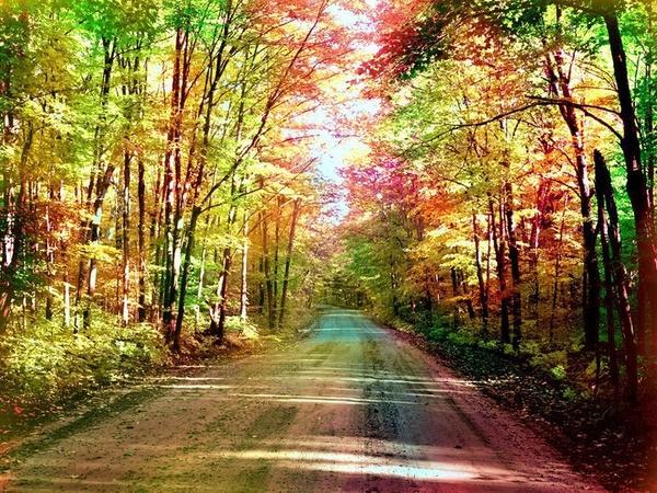 La Felicidad Es El Camino Eleansar 39 S Blog