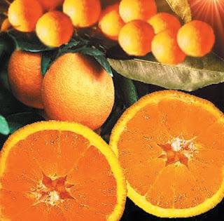 medias_naranjas